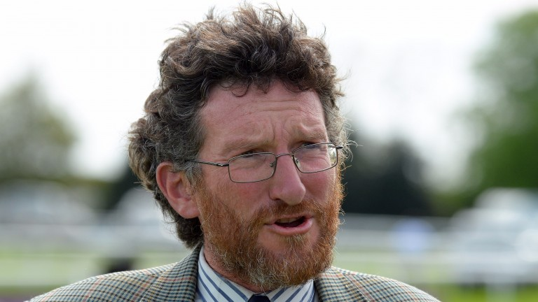 """John Berry: """"If you got a list of the horses she worked on, it would be an equine who's who"""""""