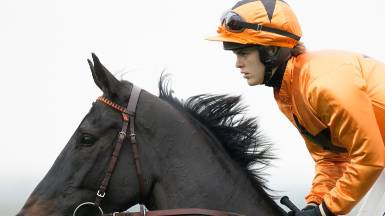Tea For Two: makes second appearance of season in Peterborough Chase