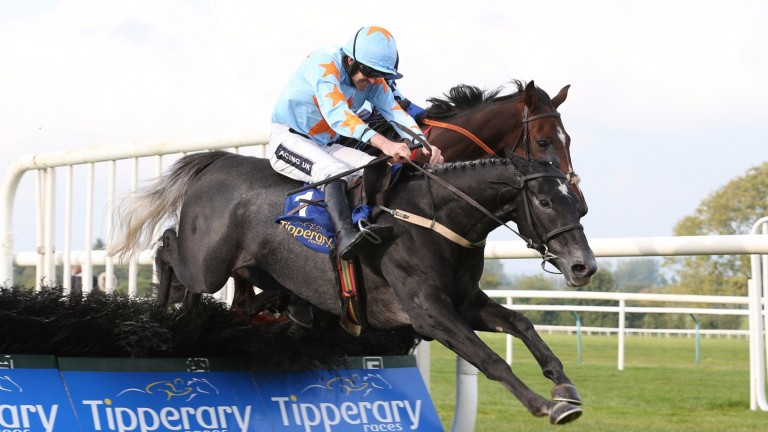 Bachasson: unseated his rider at the Cheltenham Festival last time out