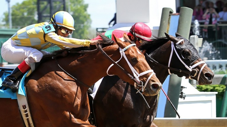 Protonico (Giant's Causeway) and jockey John Velazquez win the Alysheba (Gr II) at Churchill Downs 5/1/15. Trainer: Todd Pletcher. Owner: Sumaya U.S. Stables