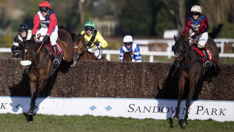 Loose Chips (nearside) clear the last to win the Grand Military Gold Cup at Sandown last year