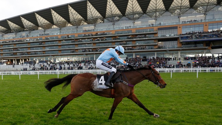 Un De Sceaux on his way to winning the Clarence House Chase at Ascot in January this year, beating Sire De Grugy by five lengths