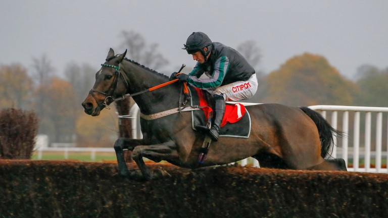 Altior: exciting chaser schooled under Noel Fehily on Friday morning