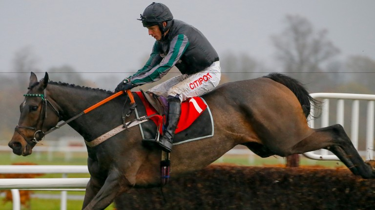 Altior: has shown a lot of class in two novice chase outings