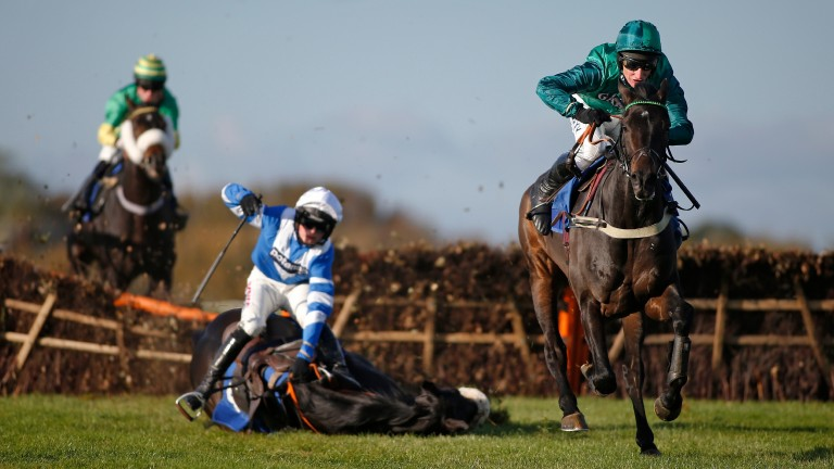Zubayr: last-flight fall leaves Sceau Royal clear in the Elite Hurdle
