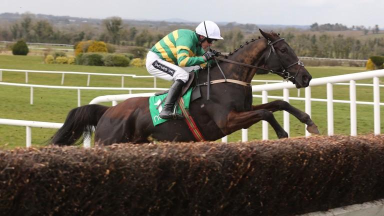 Jarry D'Honneur, pictured here winning at Navan, is one of three runners for JP McManus