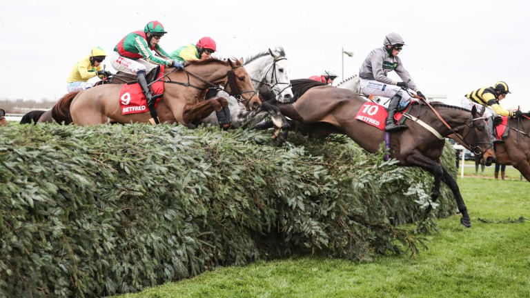 Vieux Lion Rouge (red, green sleeves) stayed on to deny Highland Lodge in the final strides