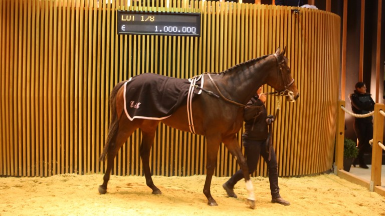 Group 2 winner Parvaneh selling in the ring at Arqana on Saturday