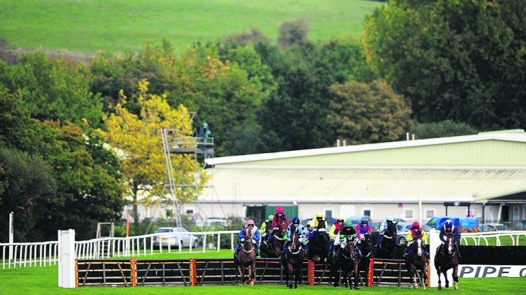Newton Abbot stages the first jumps race in nine days