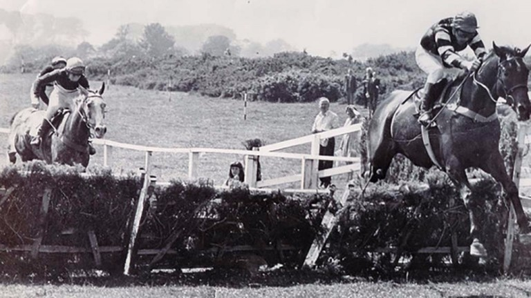 Yellow Sam: landed the legendary coup for Barney Curley at Bellewstown in 1975 when trained by Liam Brennan