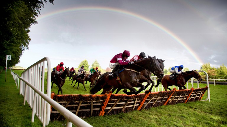 Patrick McCann's Bellewstown shot that secured him photograph of the year