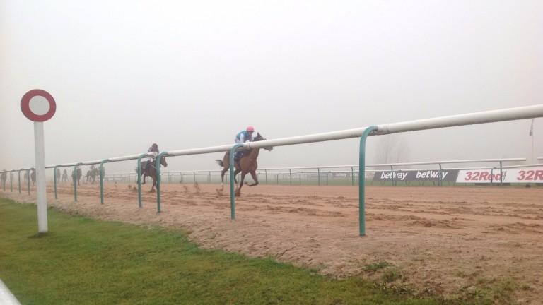 Southwell: where Striking Nigella ran on Tuesday