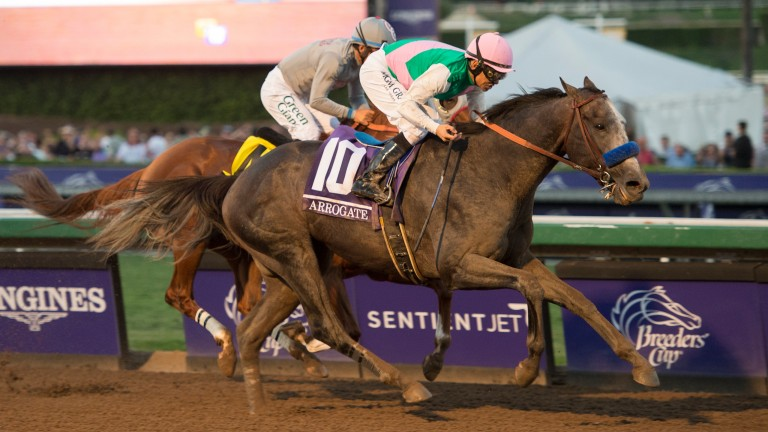 Arrogate: runs on Sunday in the San Pasqual Stakes at Santa Anita
