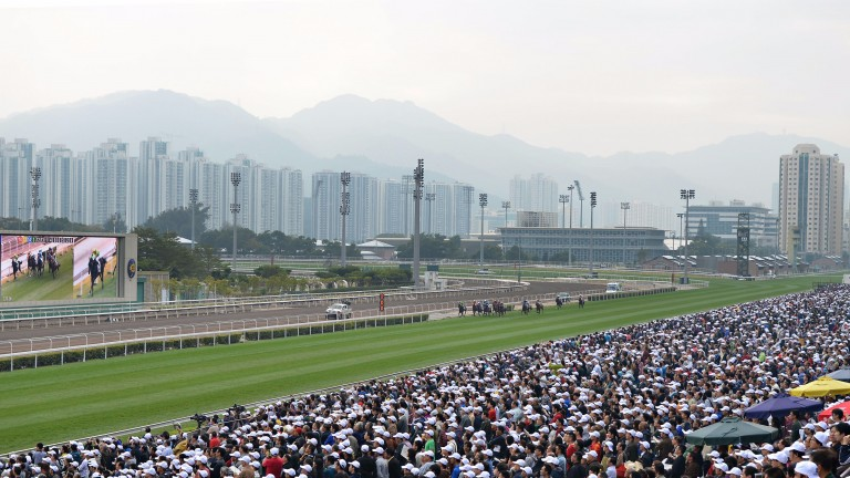 Hong Kong, where Germany's top two-year-old will continue his career