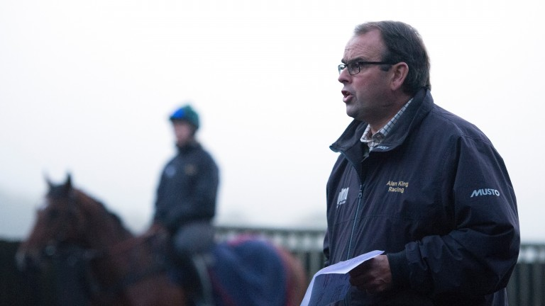 Alan King: likely to test Yanworth over two miles in the Christmas Hurdle at Kempton