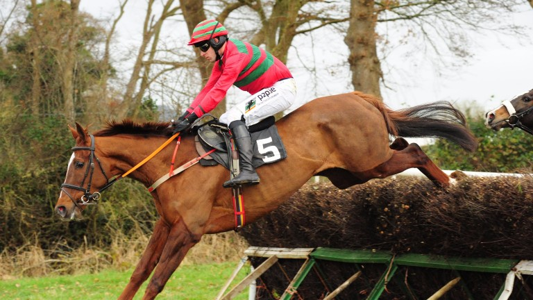 Barry O'Neill: seen here winning on star mare Maple Mons at Lisronagh saw off the late surge of Jamie Codd to be crowned champion point-to-point rider