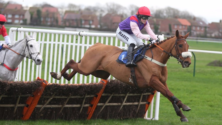 CLAN LEGEND Ridden by Lucy Alexander wins at Ayr 2/1/16Photograph by GROSSICK RACING 07710461723