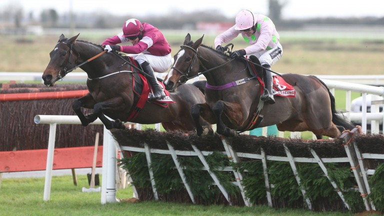 Vroum Vroum Mag (right) will take on Apple's Jade (left) and Limini at Cheltenham