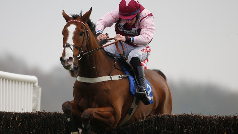 Emerging Force and Gavin Sheehan in winning form at Exeter last month