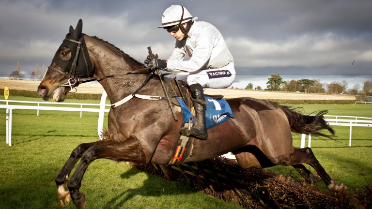 Clondaw Warrior: winner of the Galway Hurdle last year