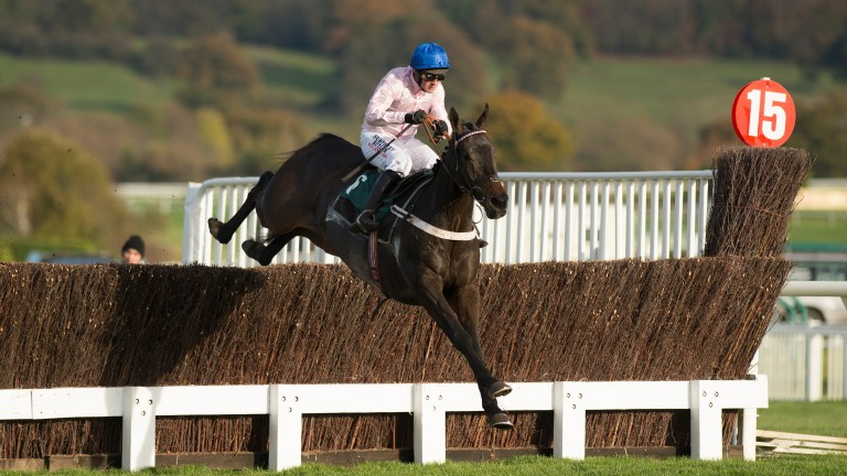 O O Seven: trainer Nicky Henderson thinks his gelding has come on a fair bit since his last win