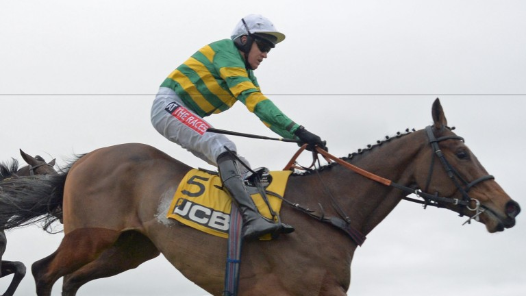 Defi Du Seuil: high-class recruit to hurdling is in action at Cheltenham on Saturday