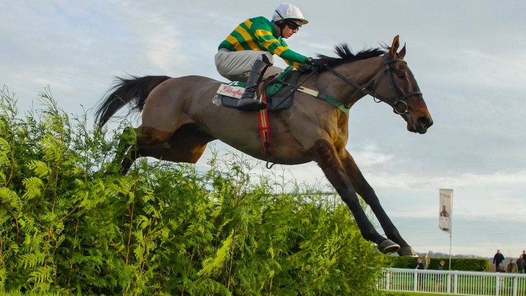 Cantlow: looks to be another winning favourite of the Cross Country chase