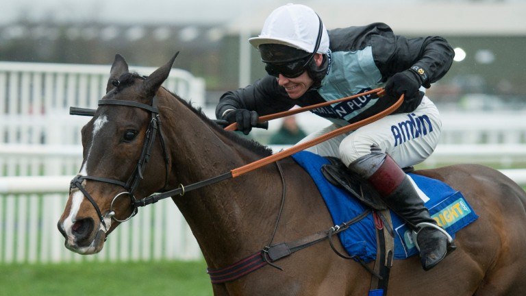 Village Vic: would prove hugely popular winner of the Caspian Caviar Gold Cup