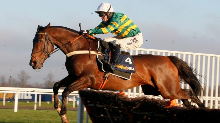 "My Tent Or Yours: ""The ground is everything to him and he's in good form,"" says Nicky Henderson"