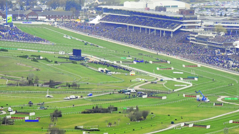 Cheltenham: protests are planned for the festival