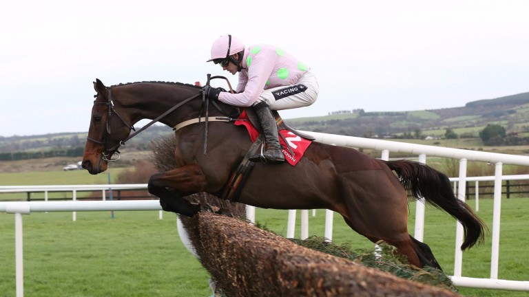 Djakadam bidding for back-to-back John Durkan Chase wins