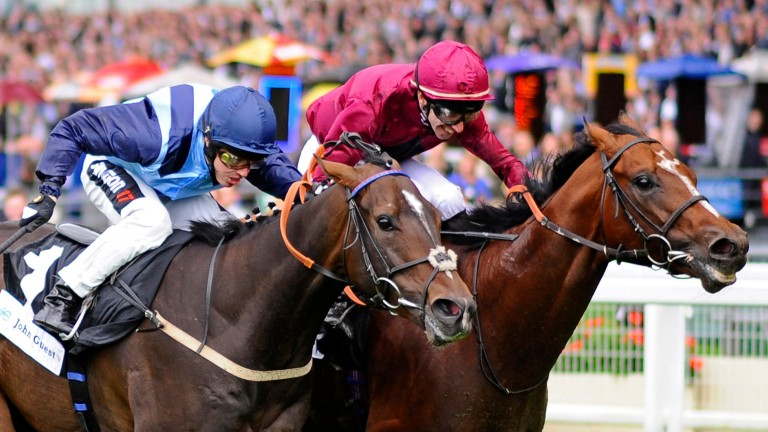 Lightning Moon (red): winning the John Guest Bengough Stakes in 2014