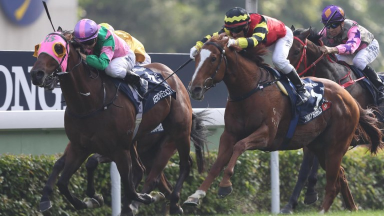 Aerovelocity (pink hood): son of Pins just holds off Lucky Bubbles in the Hong Kong Sprint