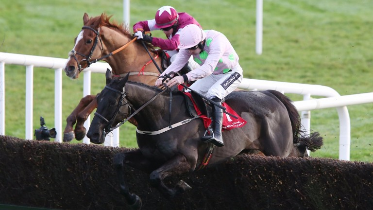 American Tom on his way to a winning chasing debut at Punchestown this afternoon