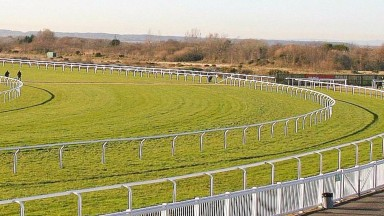Two of Thursday's selected runners go at Ffos Las