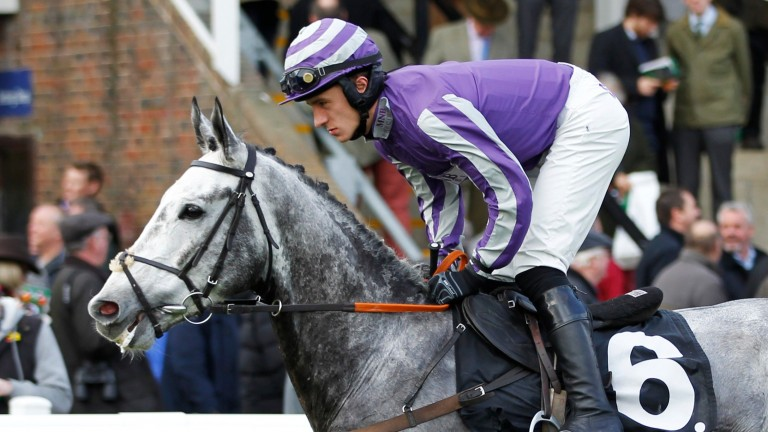 Echo Brava and Paul John at Plumpton: the ride was one of two on which the BHA built its case