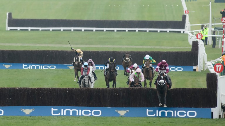 Don Cossack jumps the last en route to Cheltenham Gold Cup glory