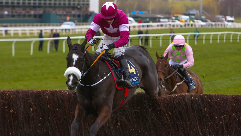Don Cossack winning this year's Gold Cup