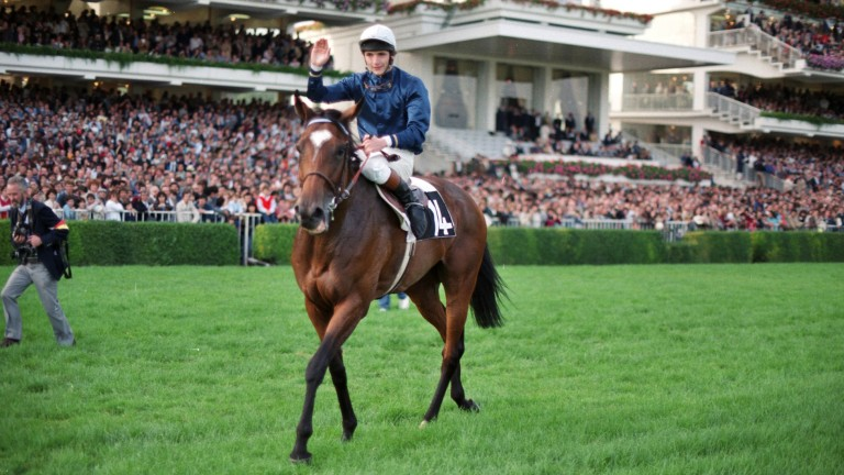 Man of the hour: Swinburn celebrates after winning the 1983 Prix de l'Arc de Triomphe on the Patrick Biancone-trained All Along, owned by the Wildensteins