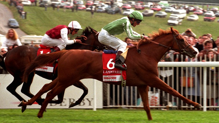 Here they come: Lammtarra (6) on the way to giving Swinburn his third and final victory in the Derby at Epsom, seeing off the attentions of Tamure in 1995