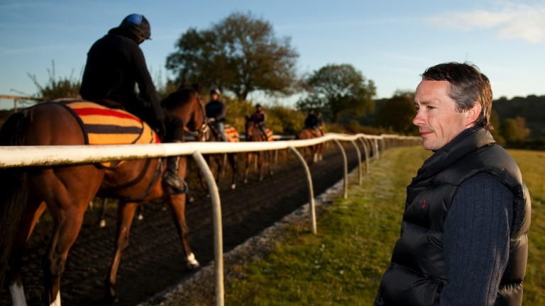 True horseman: Swinburn, who was a former trainer as well as a jockey, at his racing stables in Aldbury near Tring in 2011