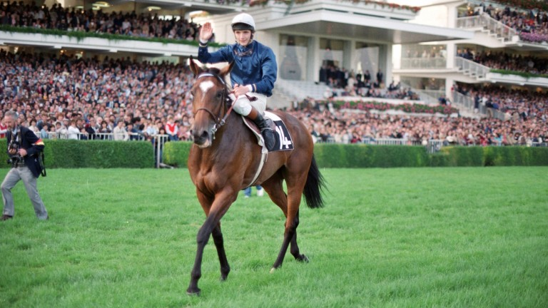 Walter Swinburn on board his Prix de l'Arc de Triomphe winner All Along