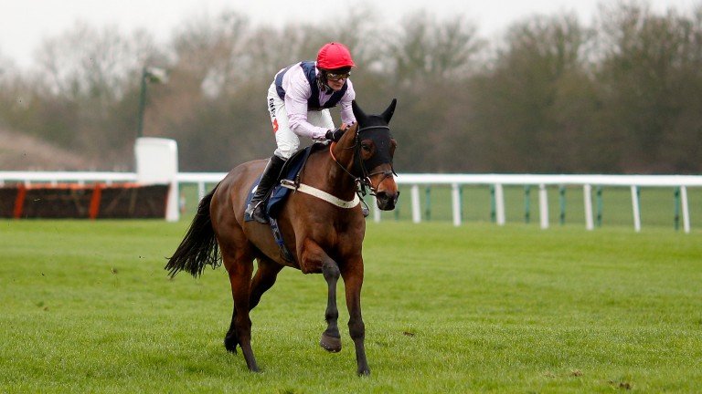 Drumacoo looked a really exciting prospect on his debut for Ben Pauling in January