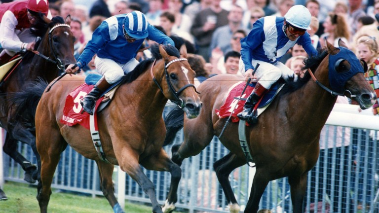 Walter Swinburn on Ezzoud (right) holds off Muhtarram and Willie Carson in the Juddmonte International in 1994