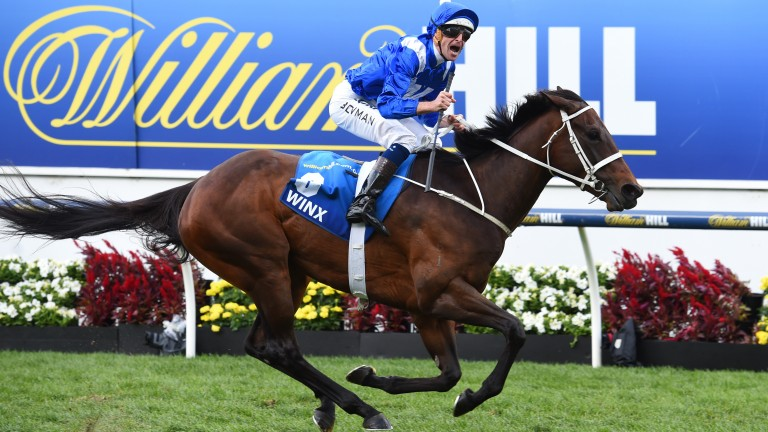 Winx: the Australian superstar will face eight rivals in the Cox Plate on Saturday