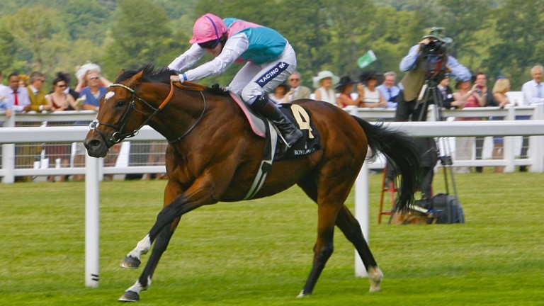 Frankel: has his first three-year-old runners in 2017