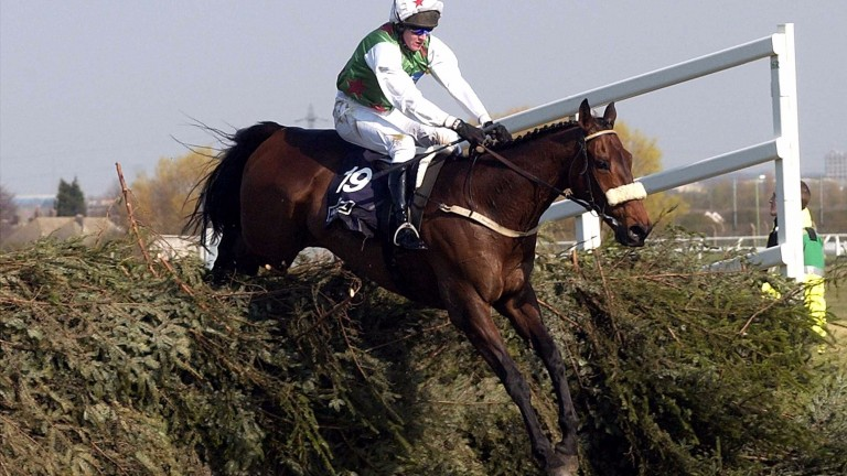 Halcyon days: Geraghty guides Monty's Pass to a famous Grand National success in 2003