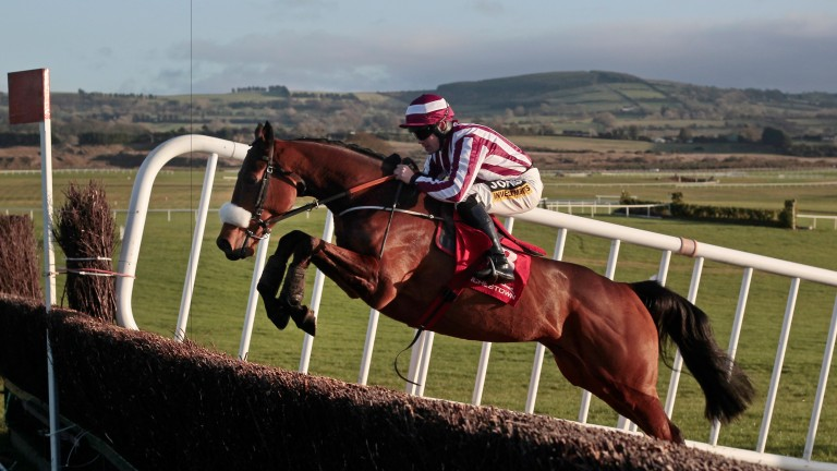 Mala Beach: looks overpriced at 12-1 for the Ladbrokes Troytown Chase at Navan on Sunday