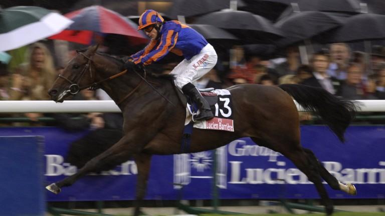 Hurricane Run: son of Montjeu won the Prix de l'Arc de Triomphe in 2005