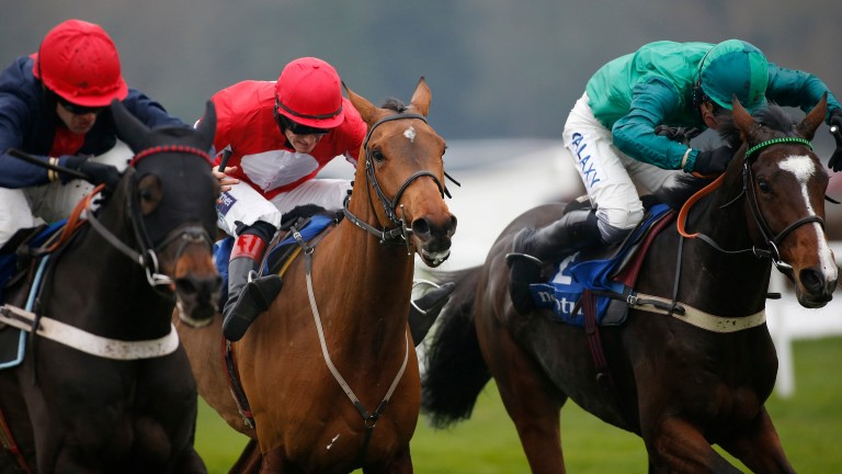 Messire Des Obeaux (right) came out on top from Ballyandy (centre) and the re-opposing Cultivator at Sandown